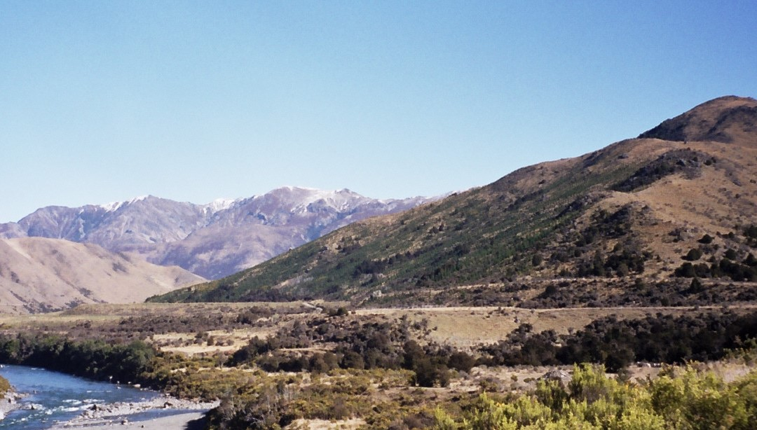 land in August 2002: weed infested unproductive hillside in North Canterbury