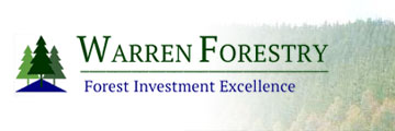 Forest Investment Excellence